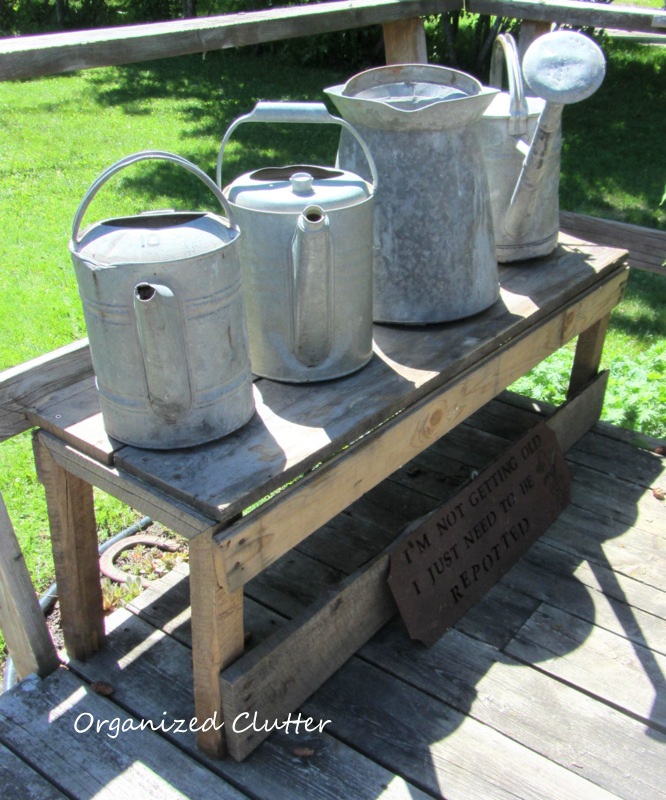 Rustic Bench with Vintage Watering Cans www.organizedclutterqueen.blogspot.com
