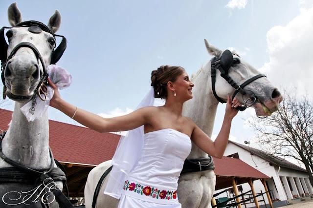 Угорське весілля наречена і коні