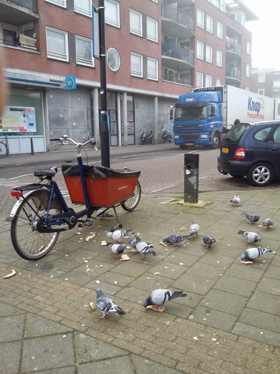 Bakfiets (Jenis sepeda di Belanda)