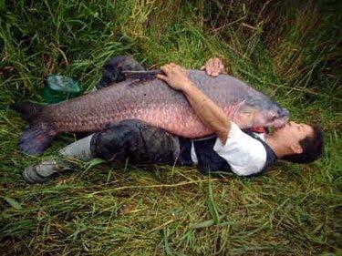 Bogotá, 15 de noviembre del 2005. Una angustiada madre denuncia a su ...