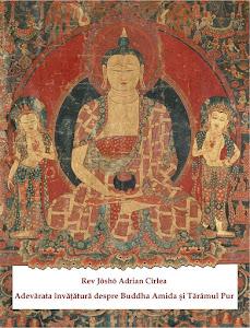 Editia online a cartii mele Adevarata Invatatura despre Buddha Amida si Taramul Pur