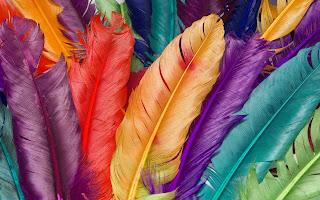 Plumas con los colores del arcoiris