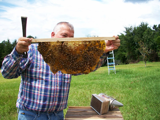 West Alabama Top Bar Beekeeper