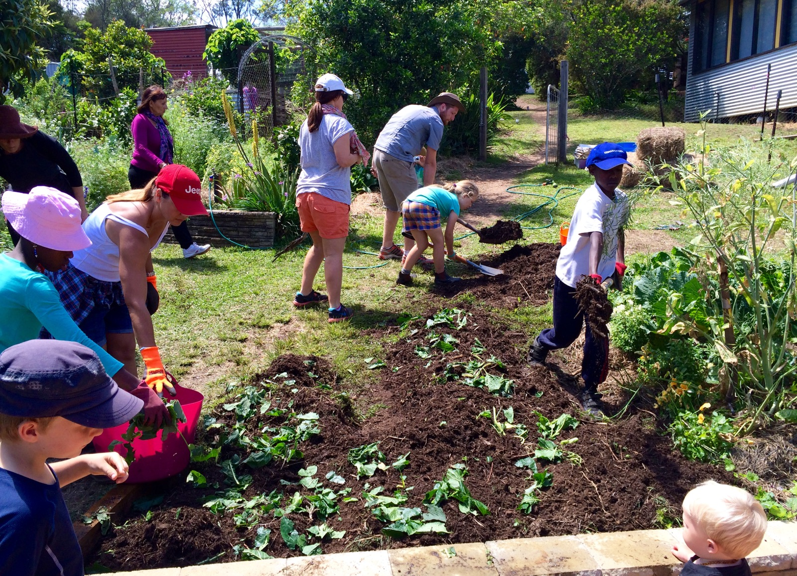 Our permaculture life morag 39 s simple successful no dig for Things in soil
