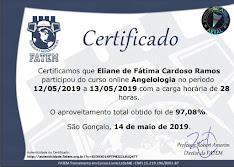 CERTIFICADO DE CONCLUSÃO DO CURSO DE ANGIOLOGIA