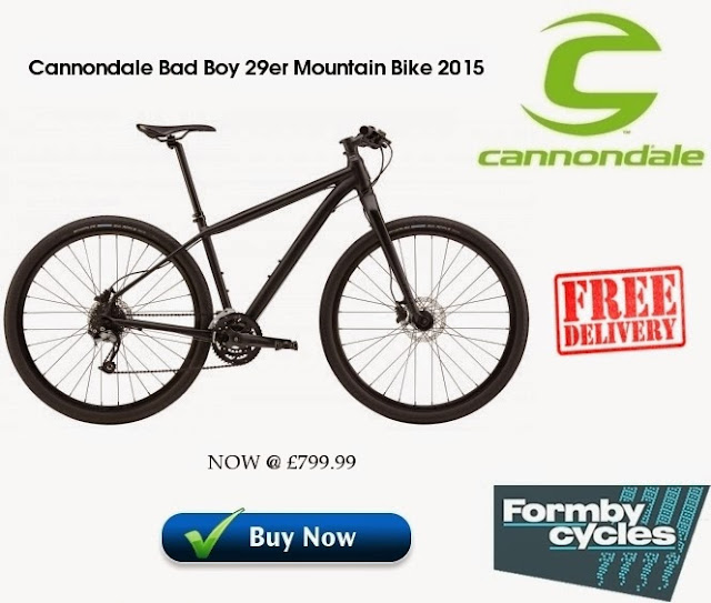 2015 Mountain Bike: Cannondale Bad Boy 29er
