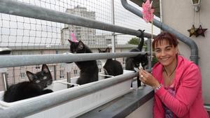Katzennetze anbringen Vox hundkatzemaus