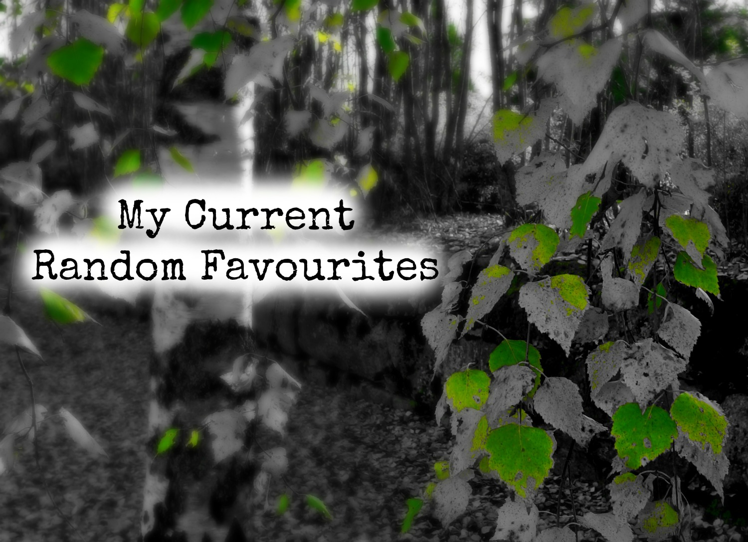 my current random favourites. leaves. autumn. green