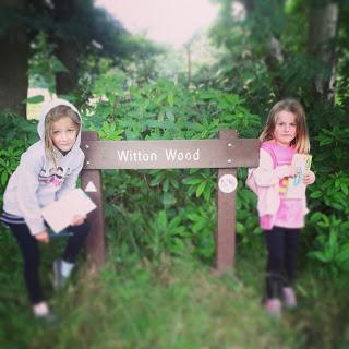 Witton Wood