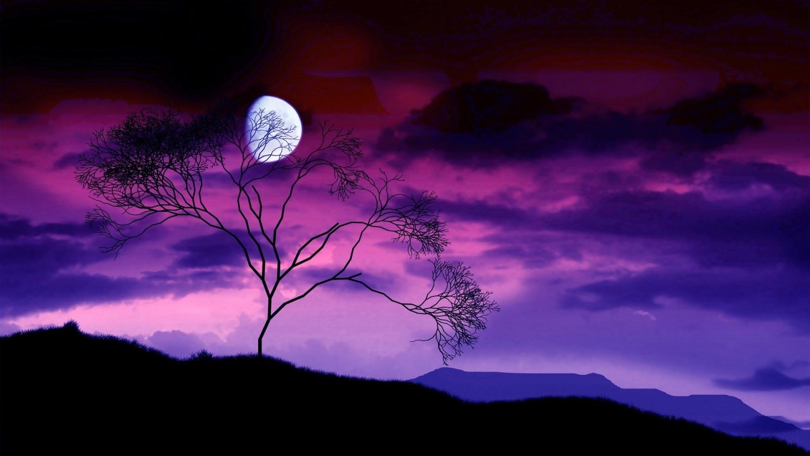 Entre no Paraíso da Luz da Lua! ☾