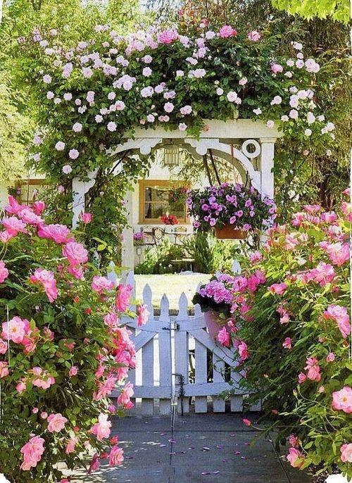 Querido Refúgio  Decoração Um jardim cheio flores