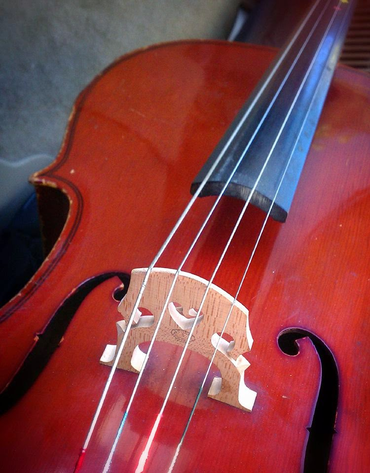 cello music instrument arts