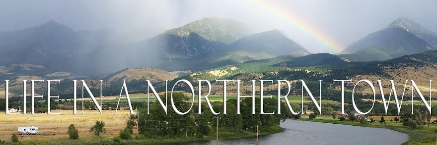 Life in a Northern Town