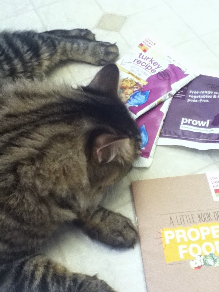 Nescas Nook The Honest Kitchen dehydrated cat food Prowl Grace