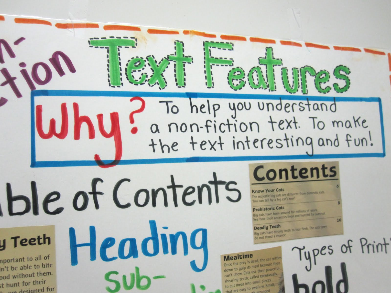 nonfiction text features worksheet 3rd grade