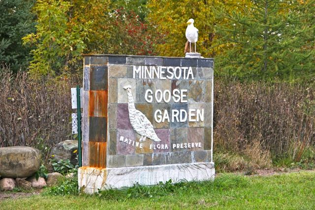 Minnesota Goose Garden in Sandstone