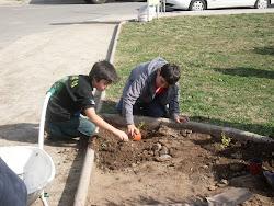 Niños de San Alberto, plantando árboles y flores, junto a sus padres y vecinos.