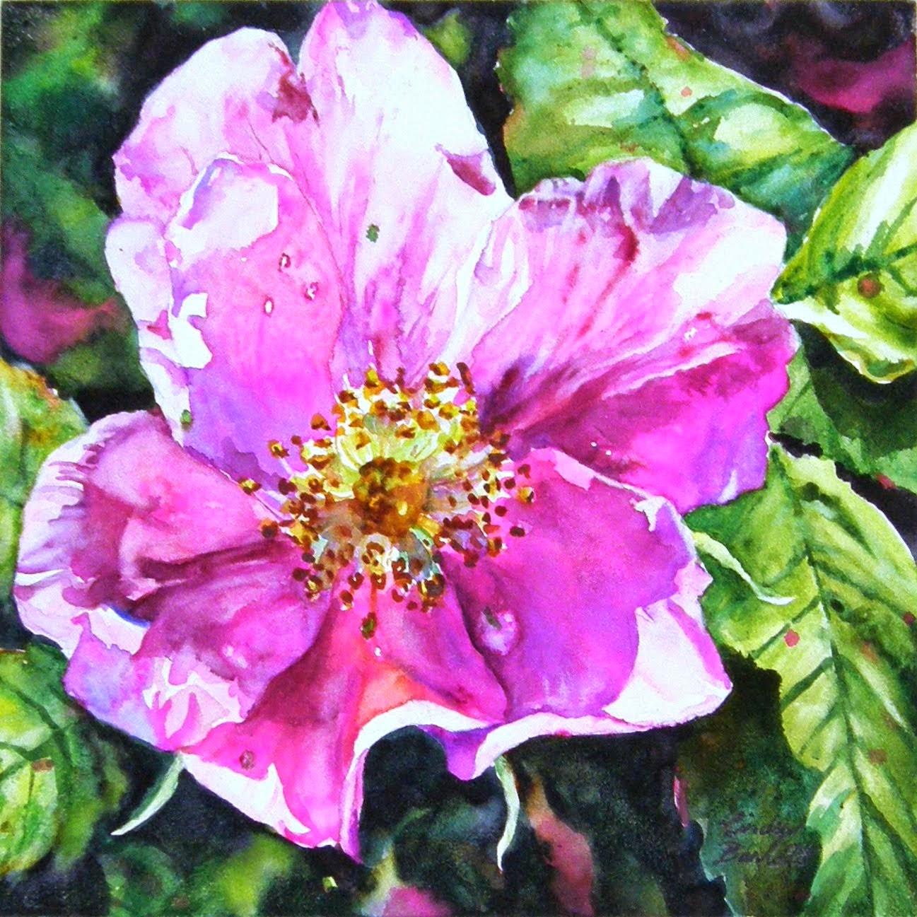 Alberta Rose #4