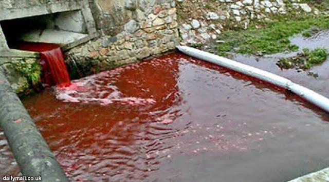 lautan darah