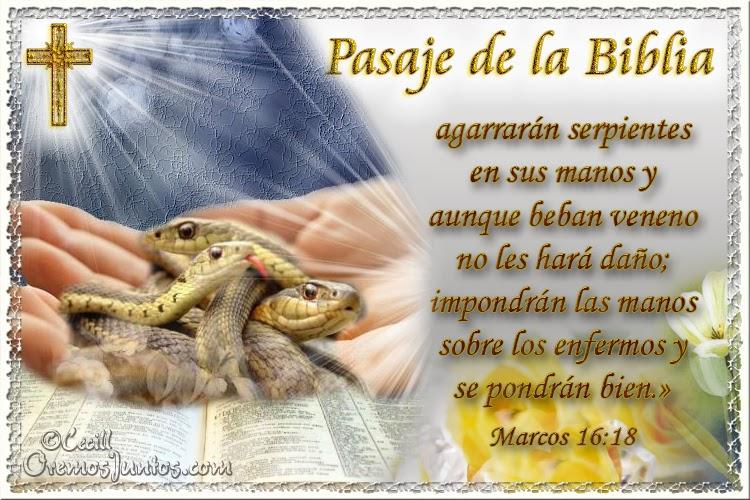 Vidas Santas: Santo Evangelio según san Marcos 16:18