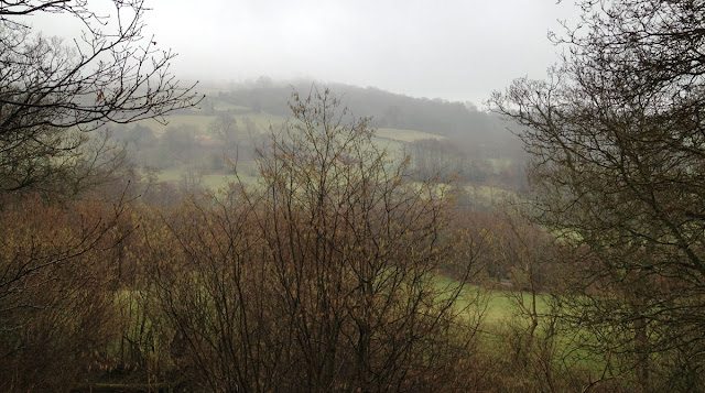 View from Scord's Wood, 3 March 2012.