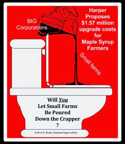 Small farm Maple Syrup producers  being poured down toilet Big Corporations left in jug