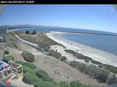 LIVE WEB CAM - CLICK PHOTO