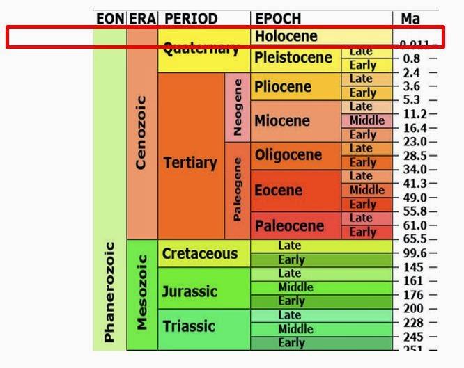 Holocene Epoch Related...