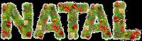 Natal-xmas png