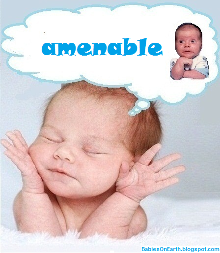 amenable