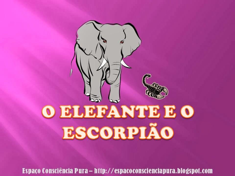 Contos, Contos para reflectir, Reflexões, Espaço Consciência Pura, http://espacoconscienciapura.blogspot.com