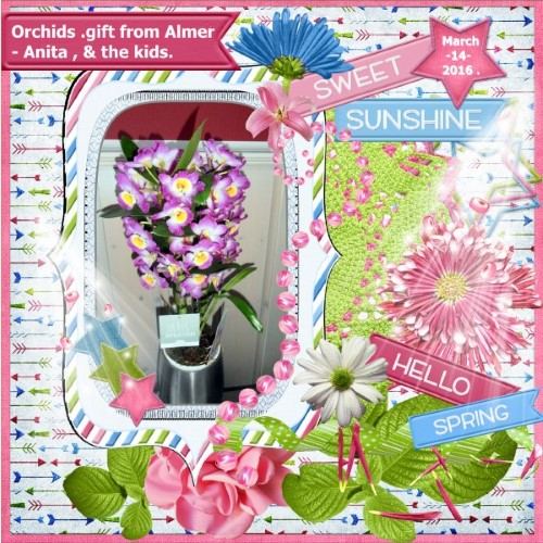 March 2016 - Orchids gift .