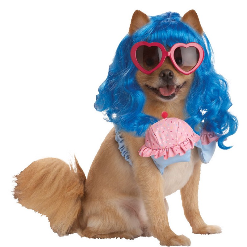 ... the doggie Wonder Woman costume is so 2011 then these pop a costumes are right for her. You donu0027t want to pay the price for designer dog clothes.  sc 1 st  ImagineMDD & ImagineMDD: Rocker Dogs Pet Parades Runways Photos