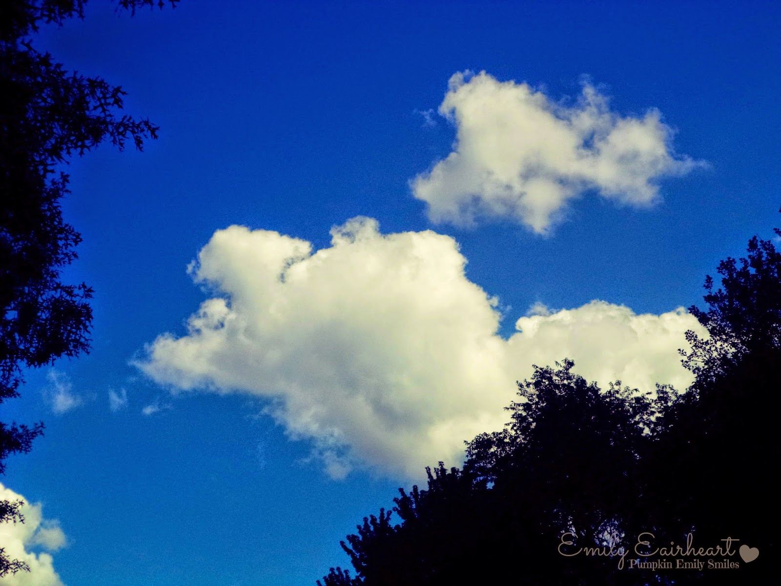 Clouds that look like a baby bird and elephant.