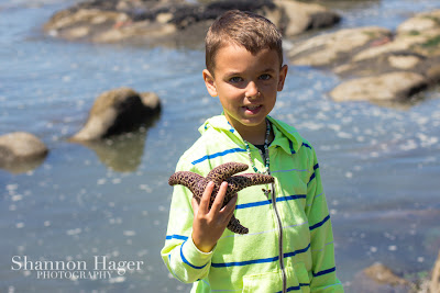 Shannon Hager Photography, Beach Portraits, Starfish
