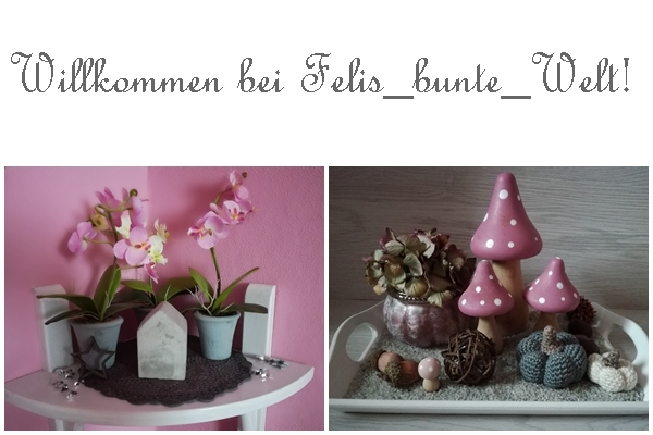 Felis_bunte_Welt