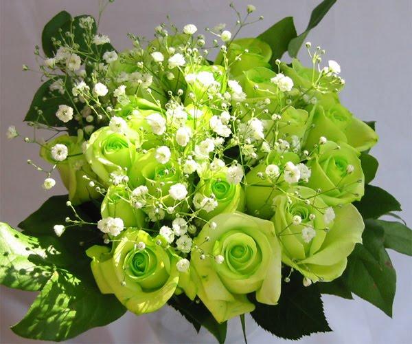 Bunga Yang Menjadi Kado Terindah Ini Pastiakan Memberi Warna Yang