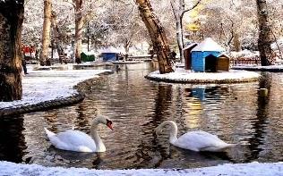 Kuğulu Park Ankara