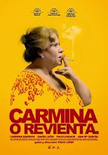 Carmina o revienta. (2012)