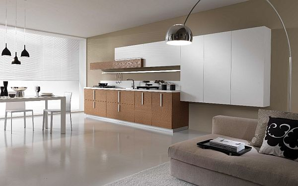 Minimalist Super Modern Kitchen