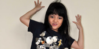 Amanina Afiqah Ibrahim