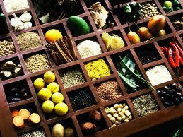 obat, ternak, hewan ternak, berbagai macam penyakit
