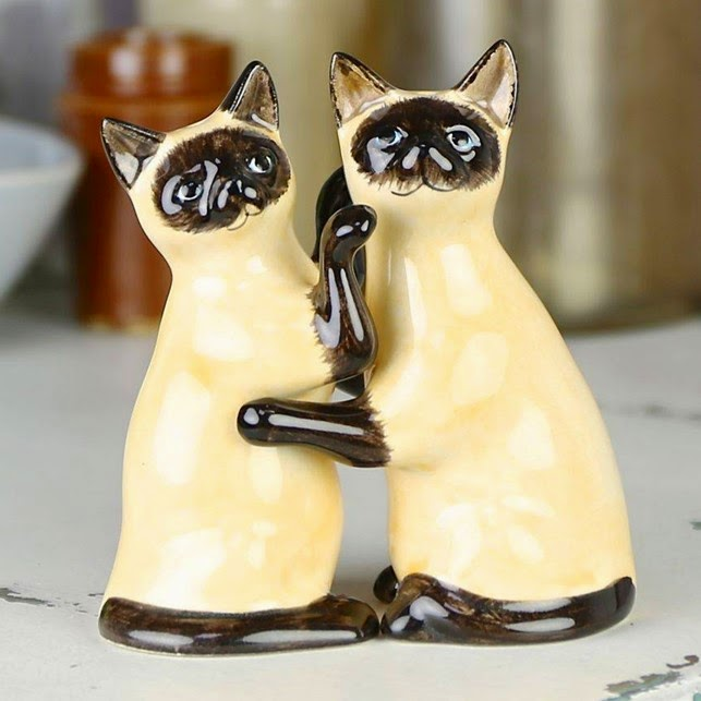 Siamese cat salt pepper