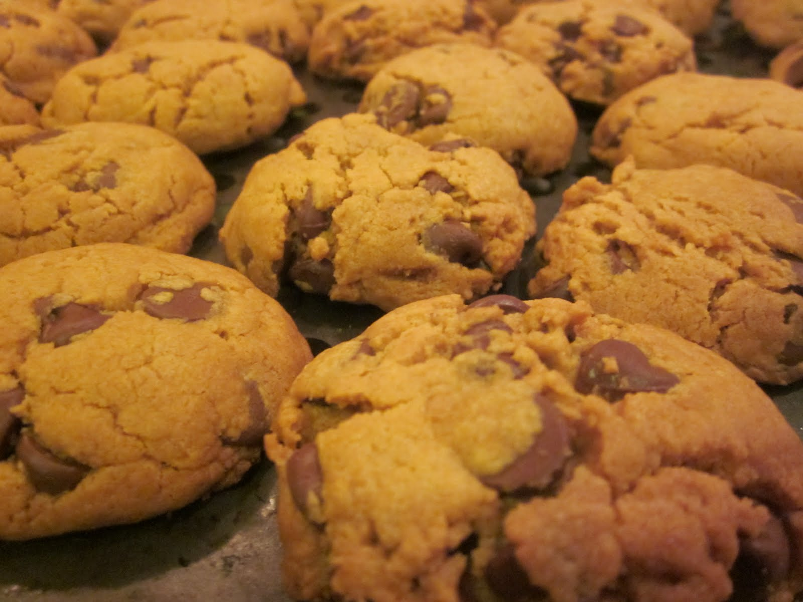 ... and sweet.: Passover Flourless Peanut Butter Chocolate Chip Cookies