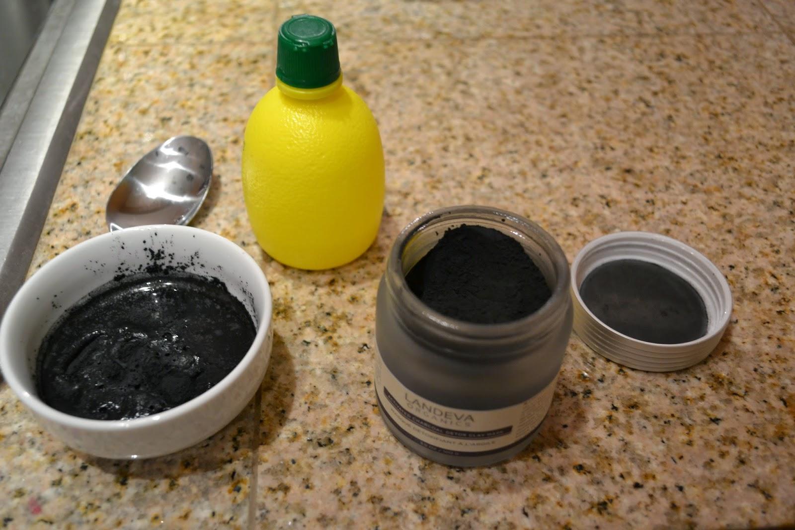 Landeva Organics Activated Charcoal Detox Clay Mask