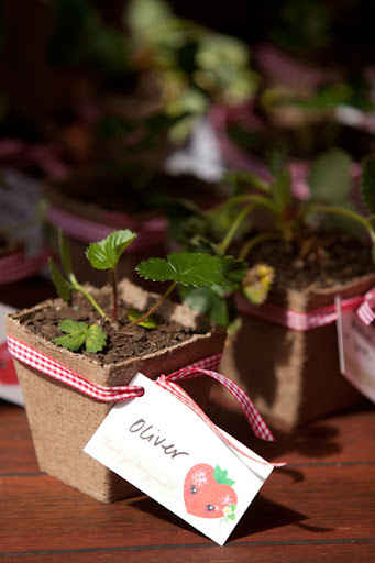 Strawberry Birthday Party plant favors