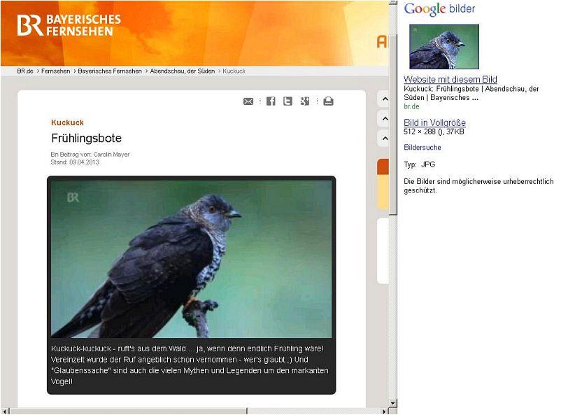 Ubhc Website