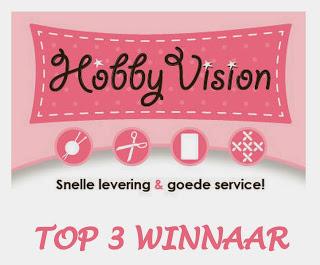 Eerste prijs bij HobbyVision