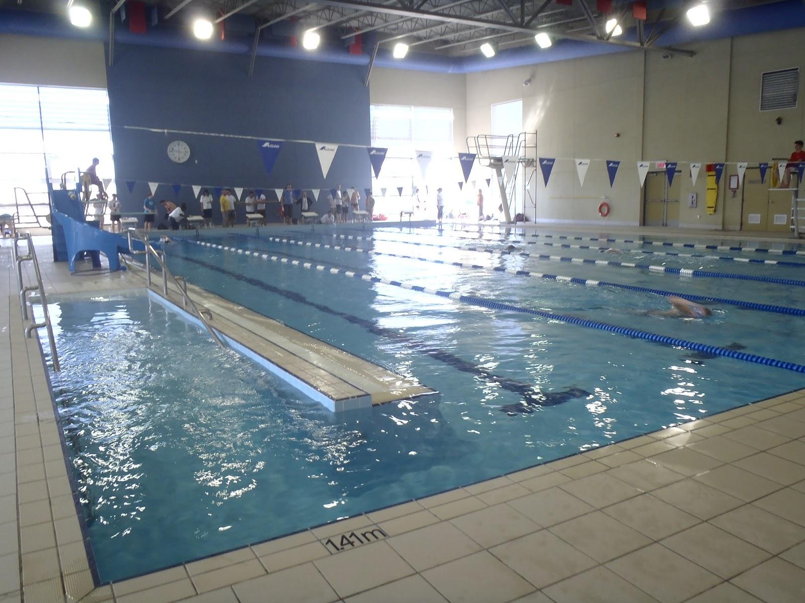 st laurent sharks masters swim club st laurent sharks at the swim eau thon