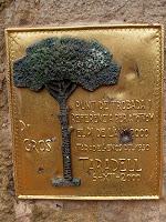 Detall de la inscripció al monòlit dedicat al Pi Gros